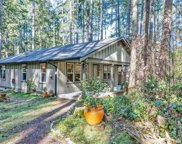 11918 Country Club Dr, Anderson Island image