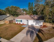 11607 Shady Tree Place, Tampa image