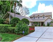 718 Buttonbush Ln, Naples image