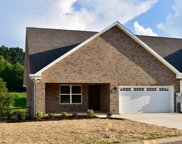 1915 Canyon Rd, Sevierville image