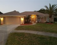 10293 Rosetti Court, Spring Hill image