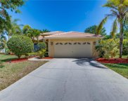 812 WILLOW SPRINGS CT, Naples image