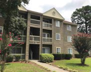 200 Myrtle Greens Drive Unit 200-J, Conway image