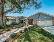 1107 Bramblewood Drive, Safety Harbor image