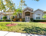 12325 Shadowbrook Lane, Orlando image