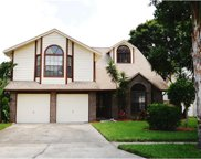 3101 Pine Forest Drive, Palm Harbor image