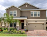 14241 Gold Bridge Drive, Orlando image