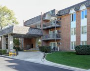4250 Saratoga Avenue Unit L309, Downers Grove image