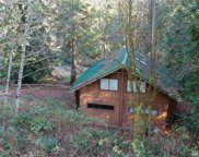230 Wilcox Rd, Mossyrock image