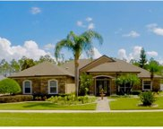 17041 Florence View Drive, Montverde image