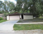 507 Constitution Drive, Tampa image