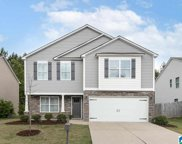229 Chesser Reserve Drive, Chelsea image