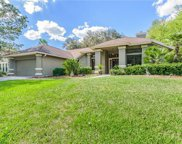 15908 Halsey Road, Tampa image