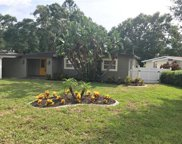 11746 N Forest Hills Drive, Tampa image