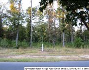 13961 Clubhouse Way Dr, St Francisville image