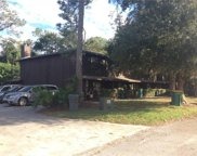 162 Bowie Lane, Kissimmee image