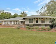 3557 Spring Valley Terrace, Mountain Brook image