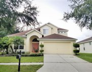 8217 Cypress Breeze Way, Tampa image