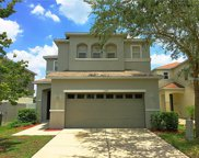 11107 Silver Fern Way, Riverview image