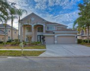 10143 Deercliff Drive, Tampa image