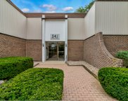 541 73Rd Street Unit N-103, Downers Grove image