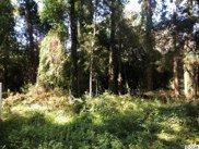 Lot 3 Cedar Grove Ln., Pawleys Island image