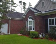 248 Tilly Ct., Conway image