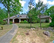500 Spring Valley Dr, Chelsea image