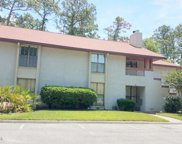 104 BRANCH WOOD LN Unit 104, Jacksonville image