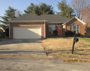 512 Black Mountain Ct, Antioch image