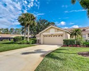 28857 Marsh Elder Ct, Bonita Springs image