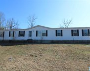 5710 Wolf Creek Rd, Pell City image