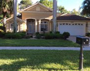 7968 Tiger Lily Dr, Naples image