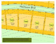 8532 Heirloom Blvd (Lot 7060), College Grove image