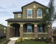 13750 Summer Harbor Court, Windermere image
