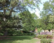 300 Claymoor Unit 1A, Hinsdale image