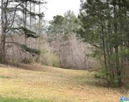 Cook Springs Rd Unit 1, Pell City image