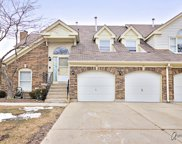 62 Willow Parkway, Buffalo Grove image