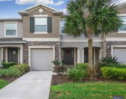 10427 Red Carpet Court, Riverview image