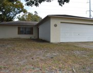 834 Green Valley Road, Palm Harbor image