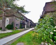 7600 Lawrence Avenue Unit 1A, Harwood Heights image