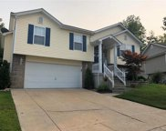406 Winter Bluff, Fenton image