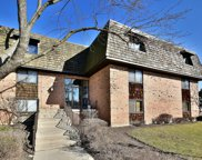 4 Oak Creek Drive Unit 3508, Buffalo Grove image
