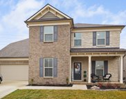 246 Rosemary Way, Mount Juliet image