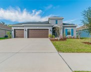 7206 Mill Hopper Court, Palmetto image
