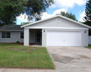 13712 Country Court Drive, Tampa image
