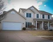 1530 River Birch, St Peters image