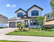 12318 Streambed Drive, Riverview image