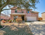 213 Pinewood Trail, Forney image