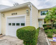 8709 Bay Pointe Drive, Tampa image